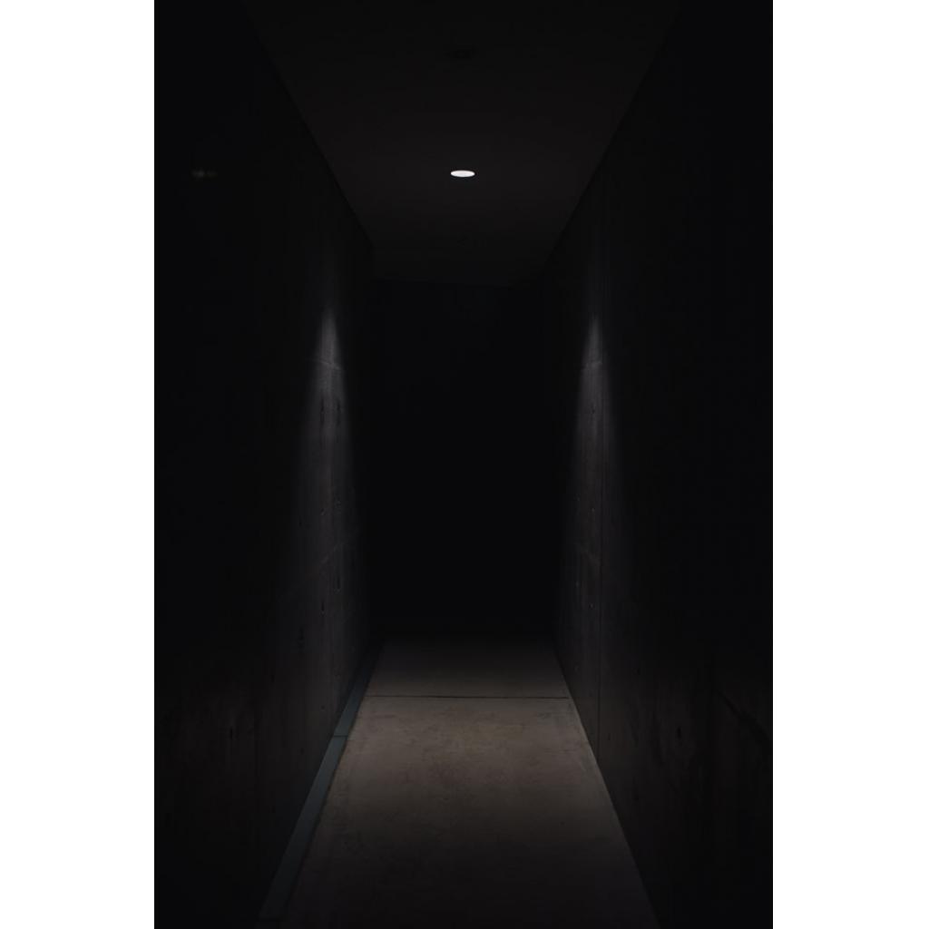 Karanlıktan Neden Korkarız?