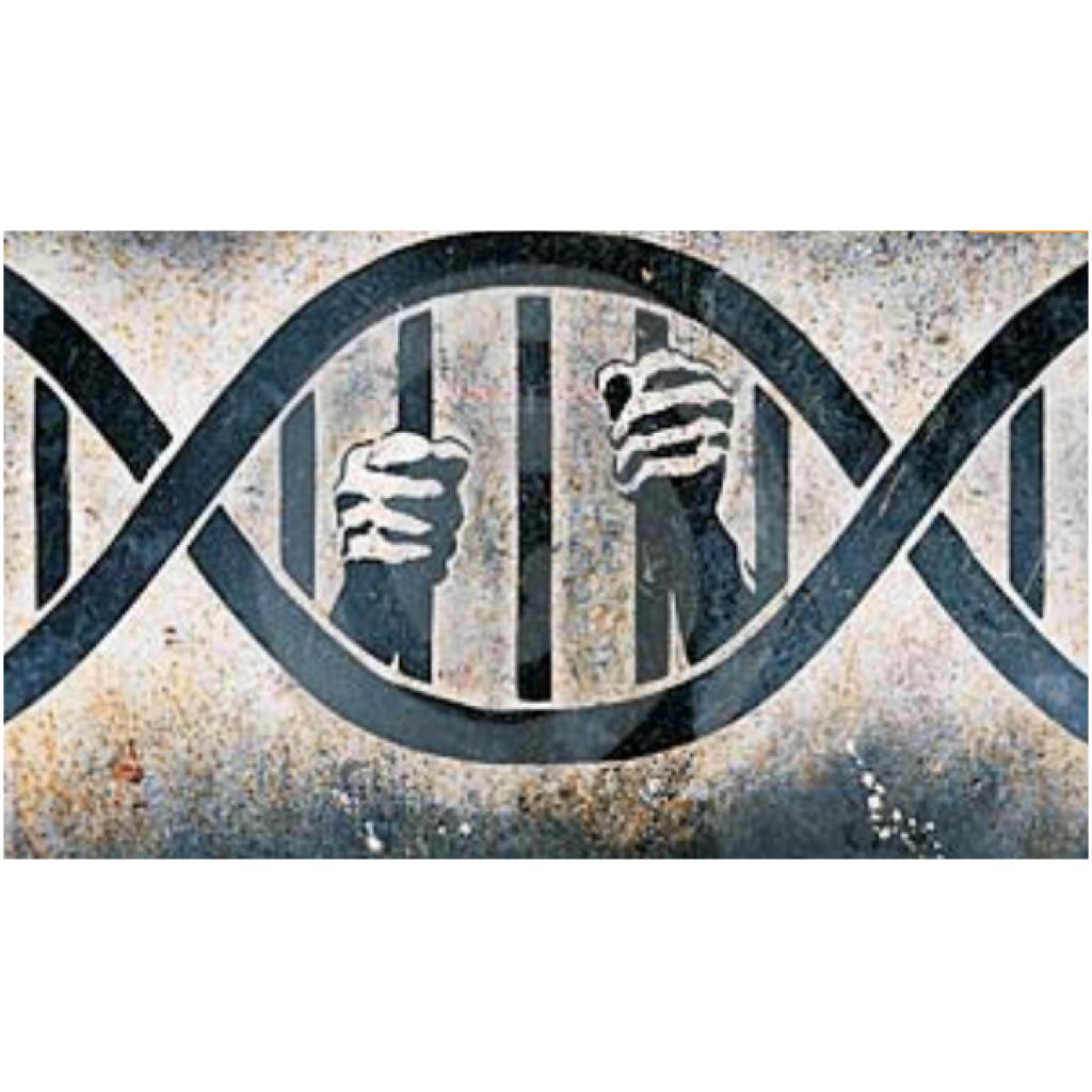Adli Genetik: Biyolojik Materyaller