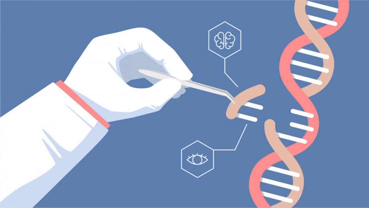 Üçüncü CRISPR Bebek Çoktan Doğmuş Olabilir!