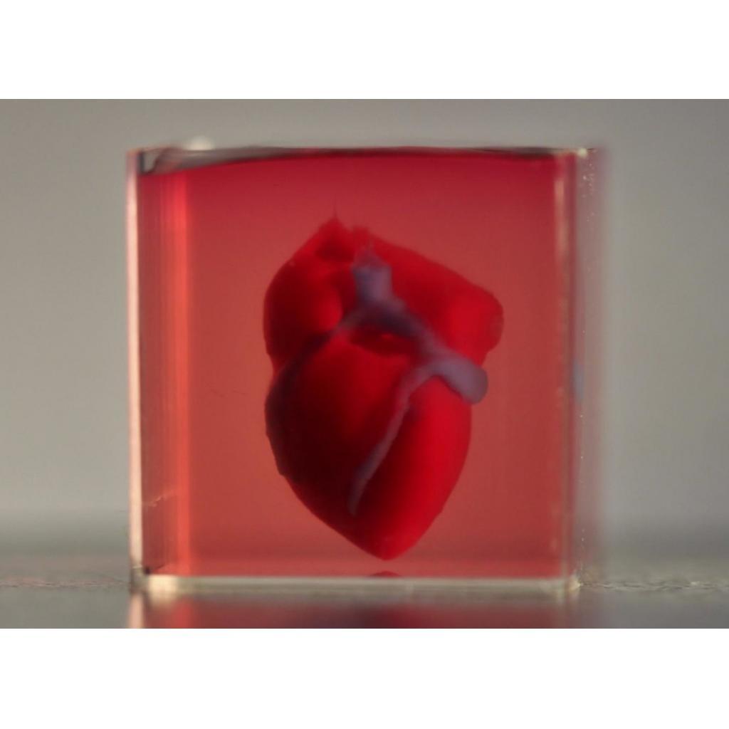 3D Yazıcıyla Kalp Yapıldı, Ama Nasıl?