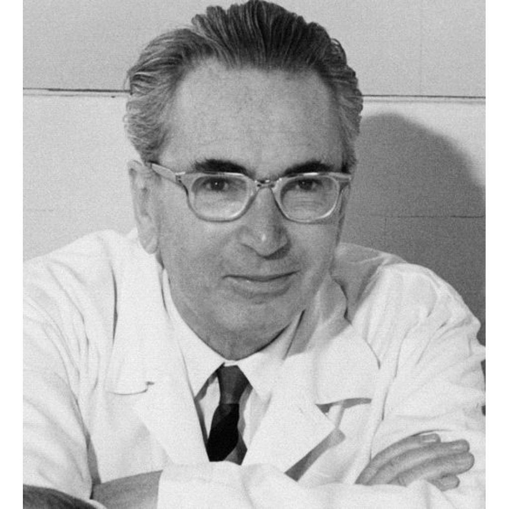 Dr. Frankl'ın Üçüncü Prensibi