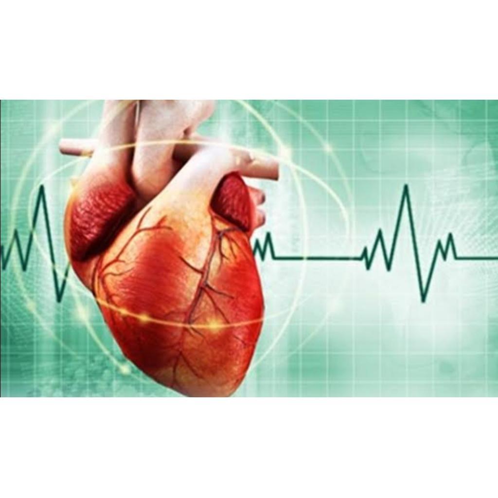 Kalp sesleri ve seslerin kaynağı üzerine