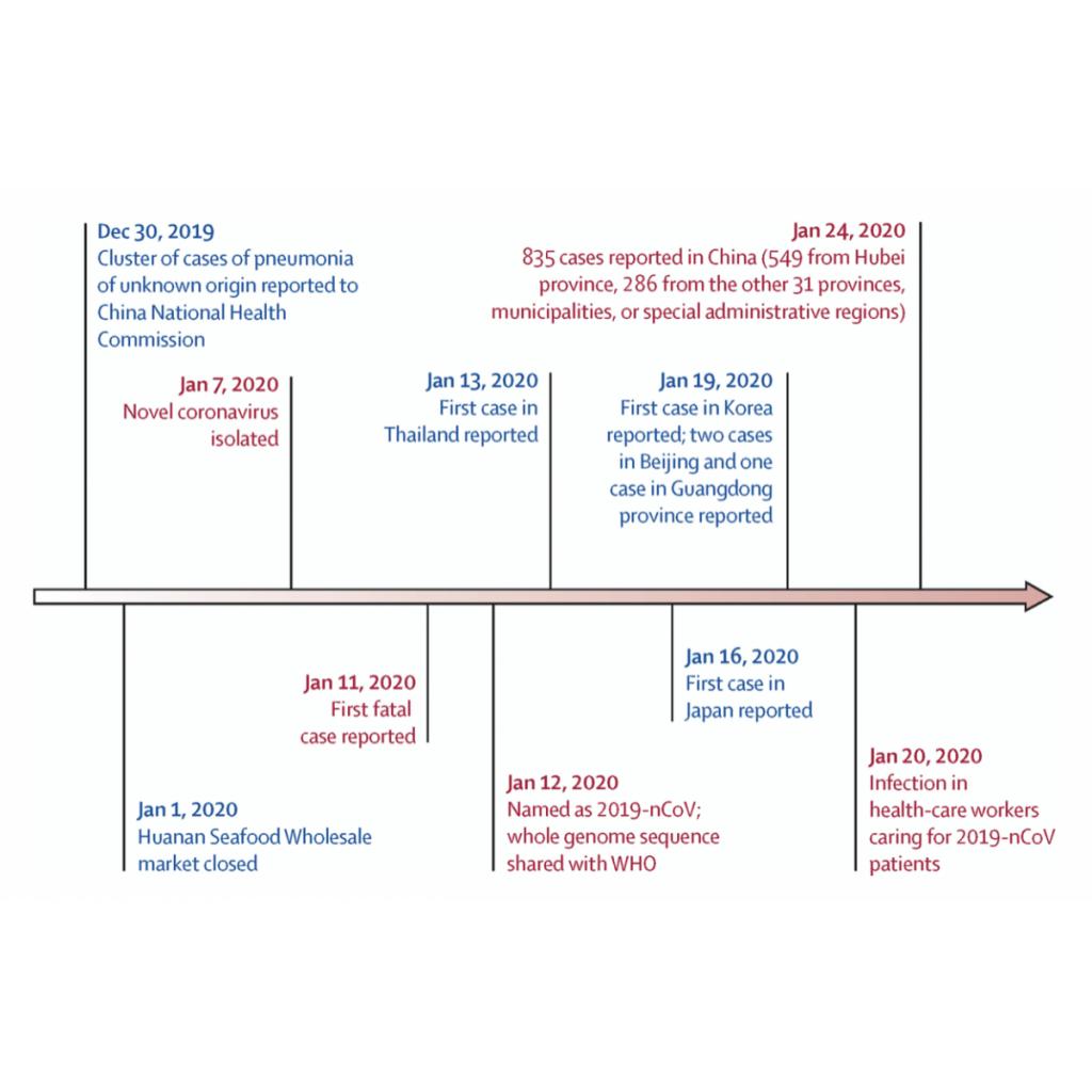 Korona Virüsleri: Genetik Araştırmalar Bize Nasıl Yol Gösterebilir?