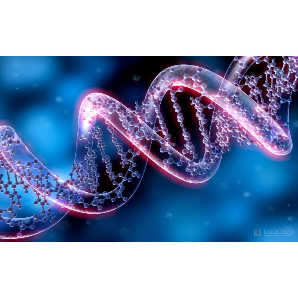 GENETİK ALGORİTMALAR