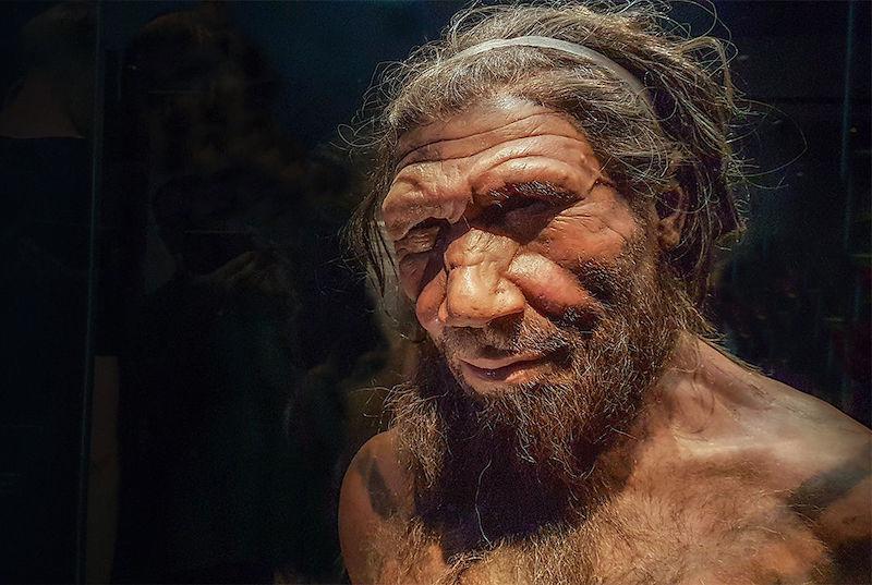 Neandertallerden Miras Aldığımız DNA, COVID-19 Riskini Arttırıyor