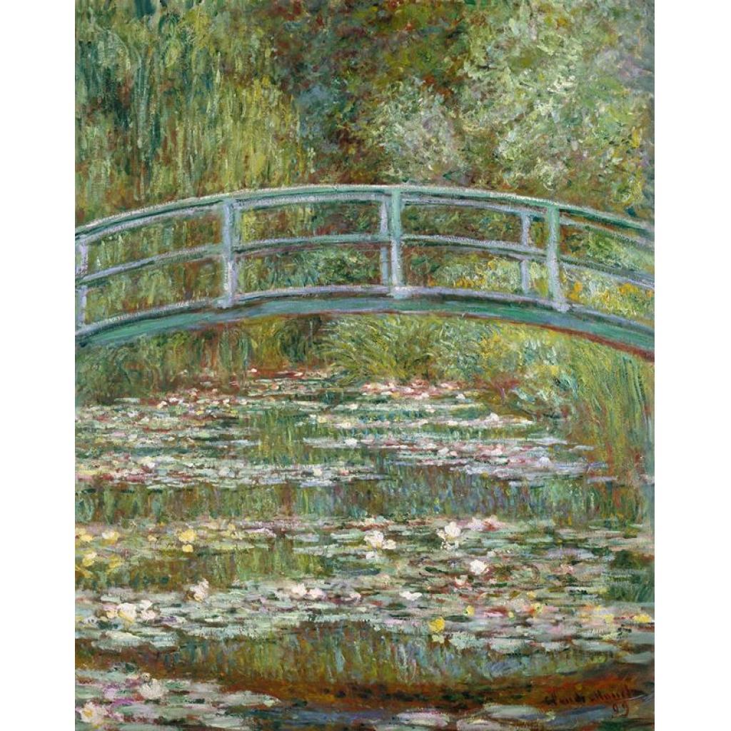 Monet'nin Gözleri, Katarakt ve Nilüferler