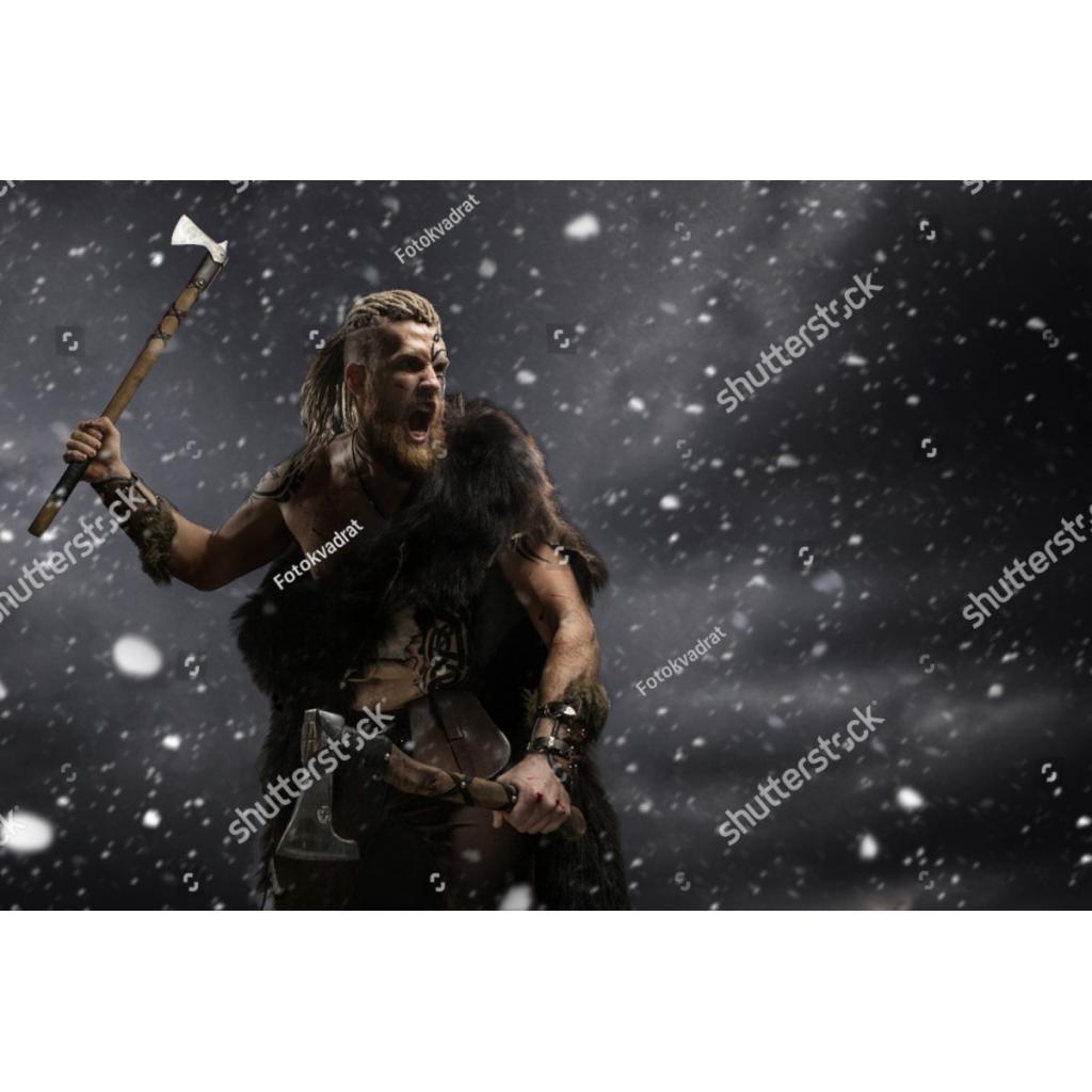 Viking Toplumu ve Genetiği
