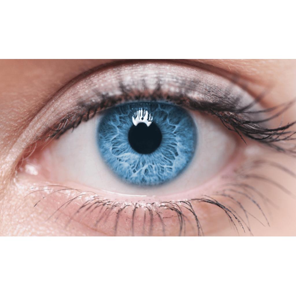 İNSAN GENOM SERİSİ – 4: Gizemli Gözler